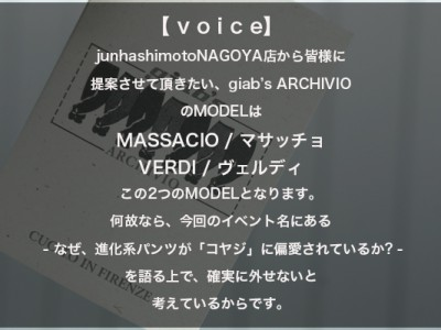 voice type 2